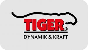 Tiger Dynamik und Kraft